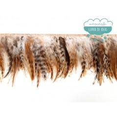 Fleco de plumas de gallo degradadas